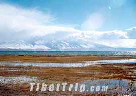 Lake Manasarovar, Ngari travel, Tibet